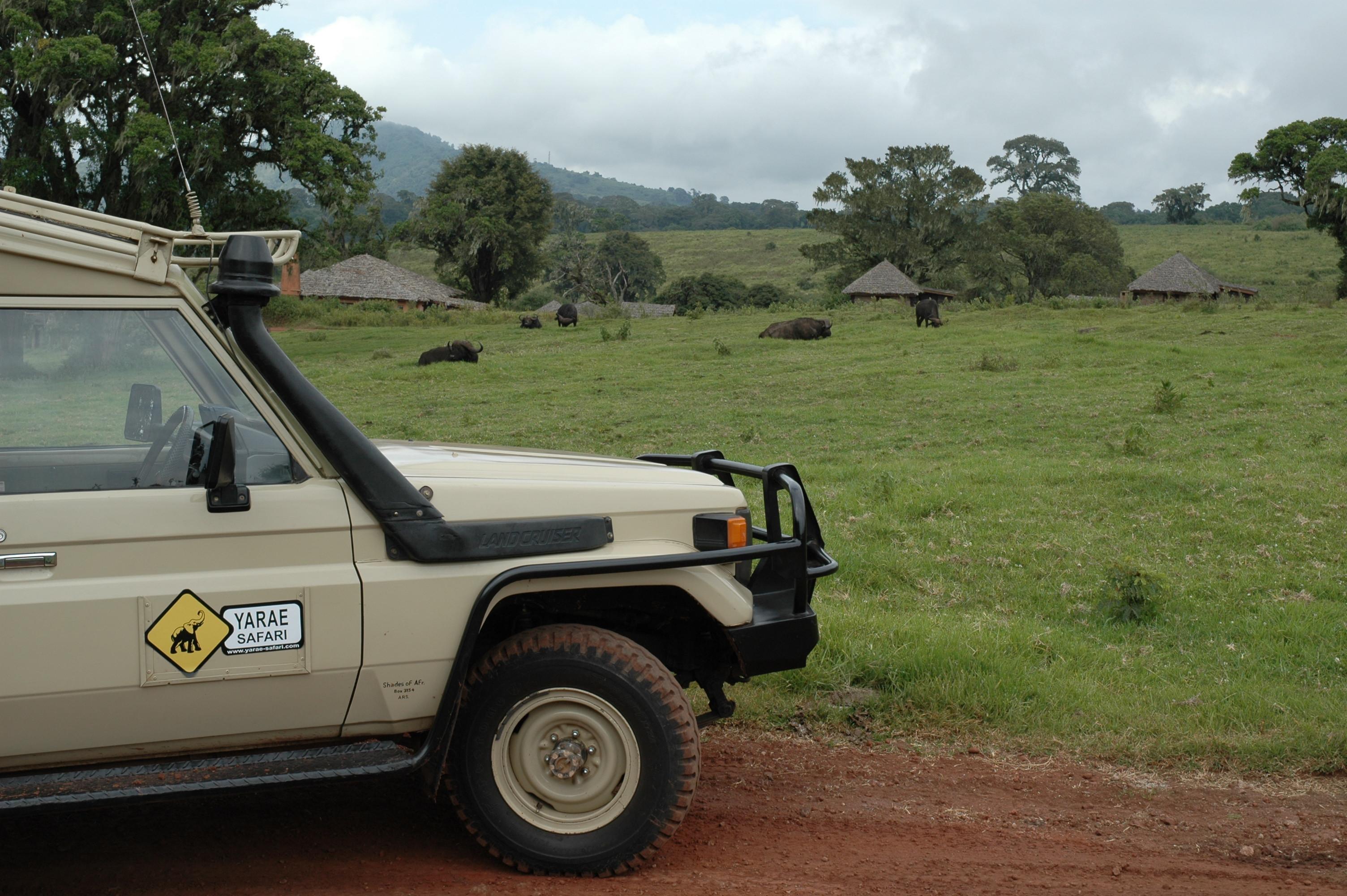 Safari Uganda 15 dias