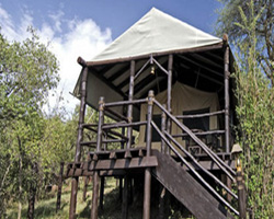 Safari en Tented Lodges