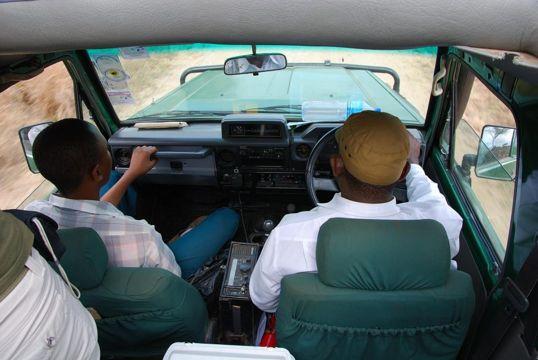 safaris en tanzania